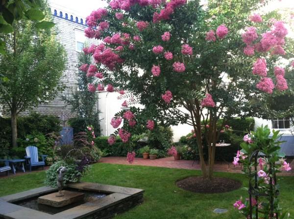 Courtyard-2013