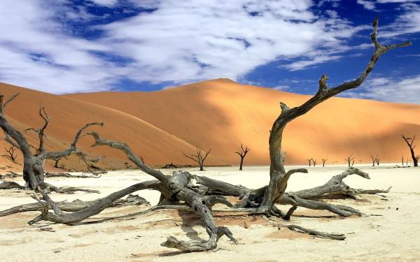 Namibia-Namib-Desert
