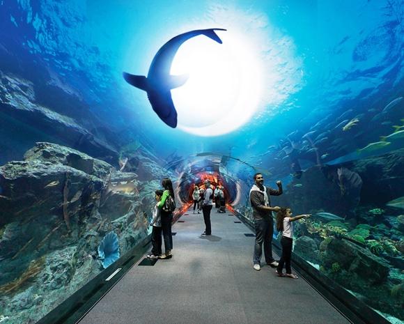 Ramdan-Tunel-Dubaï-Aquarium