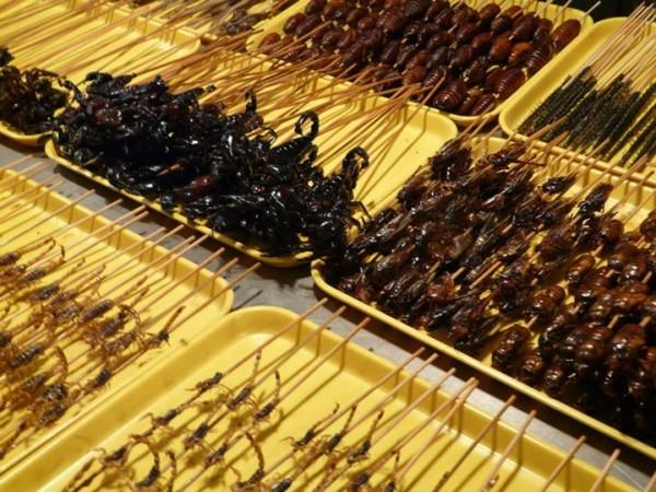 Wangfujing-market-insectes-pekin-3