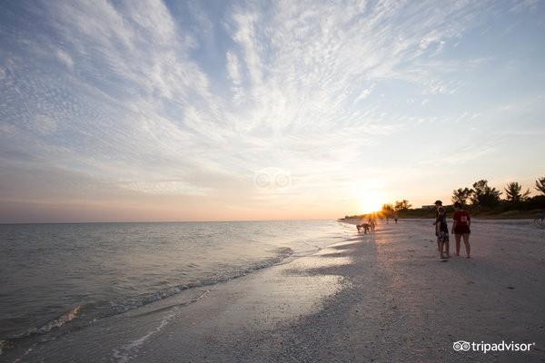 beach--v4830927