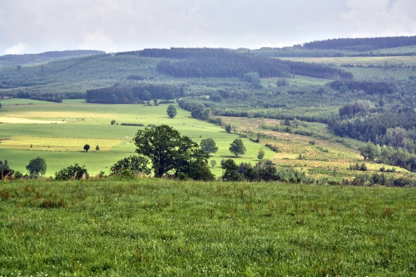 paysage-chevron
