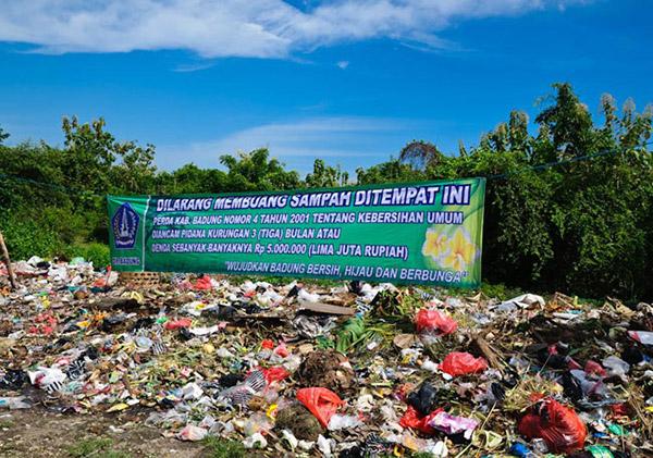 rubbish-large