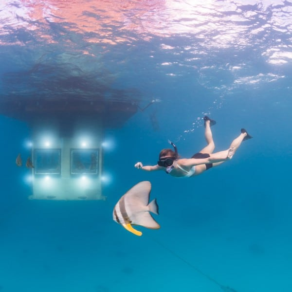 underwater-hotel-room-in-africa-
