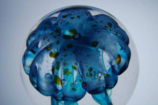 verrerie-la-meduse-les-meduses