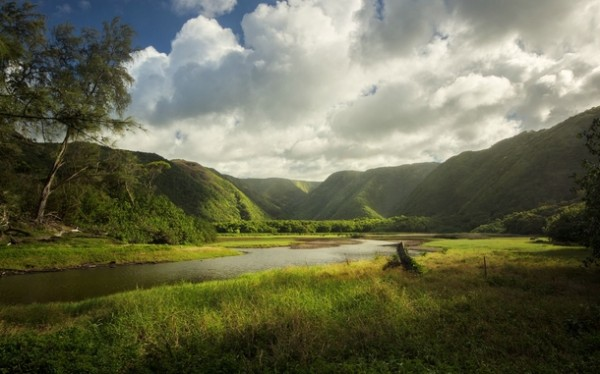 view-at-the-base-of-pololu-valley-big-island-hi--33409